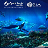 S.E.A Aquarium Singapore - Adult