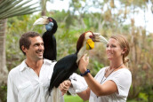 Bali Bird Park Entrance Ticket For Adult Value Rp 125.000,-