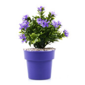 KOKOJI Flower Arrangements with Vase - Blue/KKJ-0317-10 JD