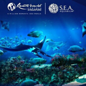 S.E.A Aquarium Singapore - Child (Age 4-12) (Value Rp. 267.000)