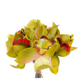KOKOJI Artificial Cattleya Bouquet - Green / KKJ-0317-55 JD