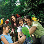 Jurong Bird Park Singapore(Adult) (Value Rp. 340.000)