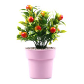 KOKOJI Flower Arrangements with Vase - Orange/KKJ-0317-09 JD