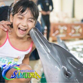 Ocean Dream Samudera Ancol WEEKEND (include ANNUAL PASS) Value Rp 300.000
