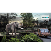 NIGHT SAFARI with TRAM SAFARI (Adult) (Value Rp. 429.000)