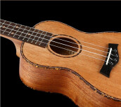 BWS 4 Aquila string Hawaiian 23-inch Concert Guitar ukulele Mini Small Guitar Folk Guitar Ukelele the Rose Vines B-37 Wood Color