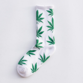 Cool My style CS-9 California skate city Maple leaf socks(about 19cm)-White