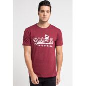COTTONOLOGY Men's T-Shirt Graham Red