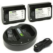 Wasabi Power Battery Kit BB-FZ100-02