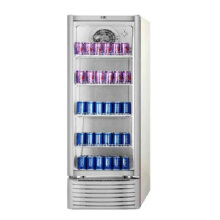 GEA EXPO-37FC Showcase Display Cooler [282L]