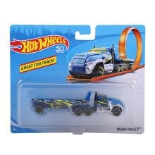 HOTWHEELS Great For Track Road Rally BFM60