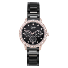 Alexandre Christie Passion AC 2691 BF BBRBA Ladies Black Dial Black Stainless Steel [ACF-2691-BFBBRBA]