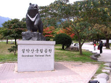 KIA TOURS & TRAVEL - 5D4N SEAT IN COACH - KOREA + Mt. SEORAK LAND TOUR 3* Hotel