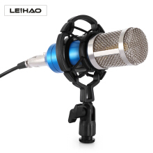 LEIHAO Professional Condenser Microphone