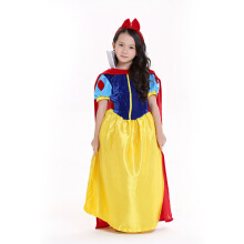 Cosplay Costumes/Party Costumes Fairytale Princess Dress Costumes