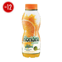 FLORIDINA Orange Carton 360ml x 12pcs