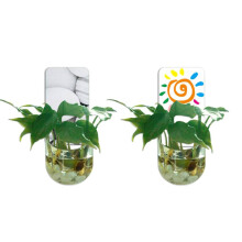 JYSK Flower Pot GFP with Sticker Assorted Color