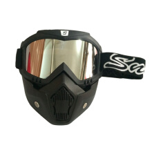Snail Goggle MX 20 Silver Grey
