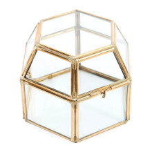 GLERRY HOME DÉCOR Hex Box Terrarium - 12Cm