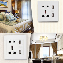 Dual USB Port Electric Wall Charger Dock Socket Power Outlet Panel Plate