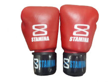 STAMINA ULTIMATE - Genuine Leather Boxing Gloves Red 6Oz