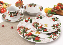 NAKAMI Dinner Set Garden Series Wild Flowers Red Green MH-2585 - 20PCS