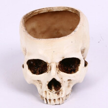 Skull model multifunctional flower pot fruit plate storage tank Large human skull