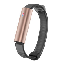 MISFIT Ray Rosegold Ss Wearables Black Sport Band La Unisex [S500BM0RZ]