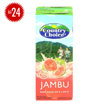 COUNTRY CHOICE Guava Carton 250ml x 24pcs