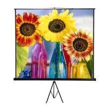 MAXTOR Tripod Portable Screen 84x84 Inci