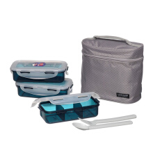 LOCK & LOCK Lunch Box 3P Set W/Bag + Spoon Fork Set  HPL754DG  - Gray