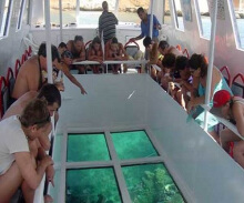 Snorkeling + Turtle Island + Glass Bottom DBali Dolphin - Nusa Dua (Value Rp. 350.000)