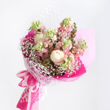 EMME Handbouquet Bunga Pinkpaw Dragon - Mix Colour / 54 x 37 x 37 cm