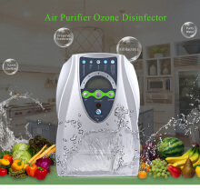 Multipurpose Air Purifier Ozone Disinfector Fruits Vegetables Sterilization SILVER EU PLUG