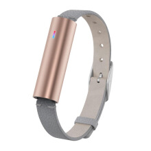 MISFIT Ray Rosegold Wearables Gray Leather Band La Unisex [S514BM0RD]