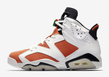 AIR JORDAN 6 384664-145  GATORADE LIKE MIKE WHITE