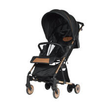 Hybrid Carryon Stroller - Rose Gold