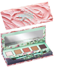 Urban Decay x Kristen Leanne Day Dream Eye Shadow Pallete