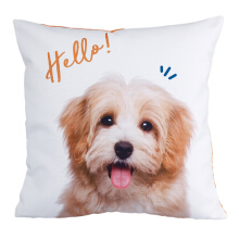 JOYLIVING Cushion Square Doggy Hello 40 x 40 (cm) - White/Brown