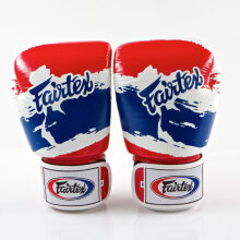 FAIRTEX Boxing Gloves STD Thai Pride BGV1-TP