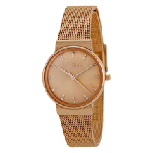Skagen Ancher Rose Gold Dial Rose Gold Stainless Steel [SKW2197] Rose Gold