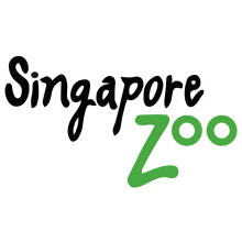 Tiket Masuk Singapore Zoo - Adult
