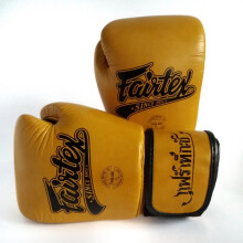 FAIRTEX Boxing Gloves STD Classic