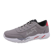 BESSKY Men's Casual Sport Shoes Spring Travel Shoes Breathable Lace-up Sneakers_