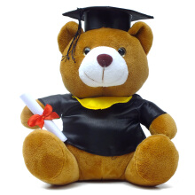 Boneka Teddy Bear Wisuda Medium