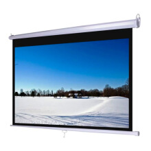 LETAEC Manual Screen - 70 x 70 inch
