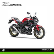 [LEASING] Kawasaki Z250 ABS [JABODETABEK] Red
