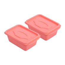 VICTORYHOME Food Box 500ml Set of 2- Peach Solid (Both of)