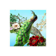 [COZIME] 30X30CM Peacock Pattern Diamond Cross Painting Stitch 5D Embroidery Picture multicolor