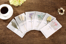 Toko diskon Creative Dried Flowers Blessing Birthday Ordinary Greeting Card Christmas Valentine's Day Random Pattern